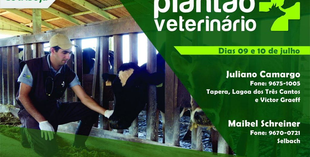 Plantão veterinário do final de semana